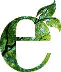 Nos valeurs écologiques